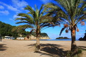 Beautiful small bay in Ibiza, Baleares Island, Spain. — Stock Photo