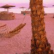 Hammock on the palm on evening purple sea and sand background — Stock Photo