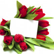 Royalty-Free Stock Photo: Red tulips and blank card