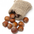 Hazelnuts falling from a miniature burlap sack isolated on white — Stock Photo #9763740