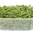 Royalty-Free Stock Photo: Rucola in plastic box