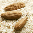 Grated almond — Stock Photo #9765589