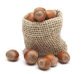 Hazelnuts in a miniature burlap sack isolated on white — Stock Photo