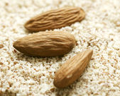 Grated almond — Stock Photo
