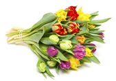 Beautiful bouquet of fresh and colorful tulips — Stock Photo