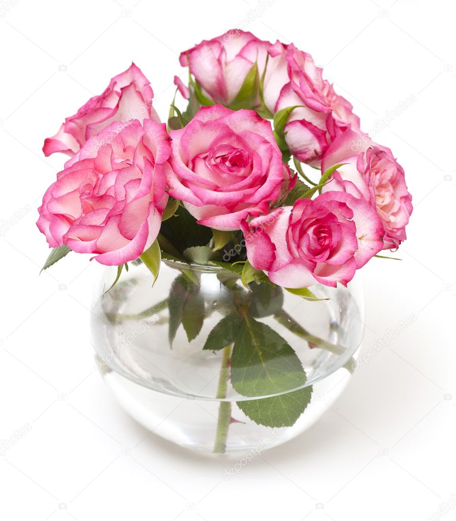 pink roses in vase stock photo dianazh 9763504. Black Bedroom Furniture Sets. Home Design Ideas