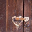 Heart shaped door lock — Stock Photo #9781102