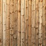 Wood texture — Stock Photo #9781373