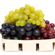 Different variety of grape on white background — Stock Photo
