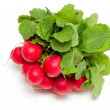 Fresh radish — Stock Photo