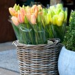 Foto Stock: Tulip in basket in flower shop