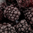 Frozen blackberries — Stock Photo #9782060