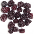 Frozen blackberries — Stock Photo #9782071