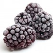 Stock Photo: Frozen blackberries