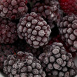 Frozen blackberries — Stock Photo #9782532