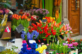 Colorful flowers on market — Stock Photo
