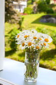 Daisies on a window-sill — Stock Photo
