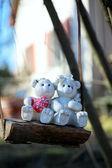 Teddy bear couple on a swing — Stock Photo