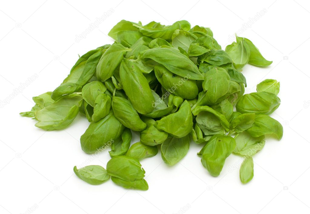 Basil leafs isolated on white — Stock Photo #9780868