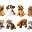 Soft animal toys - Stock Photo