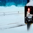 A pedestrian crossing sign covered in snow — Stock Photo