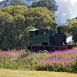 Stock Photo: Old steam train traveling in countryside