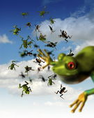 Frogs falling from sky — Stock Photo