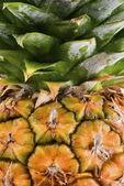 Close crop shot of Pineapple — Stock Photo