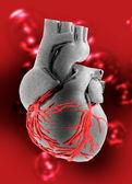 Coração humano artificial — Fotografia Stock