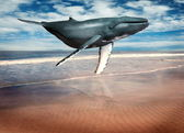 Whale floating above beach — Stock Photo
