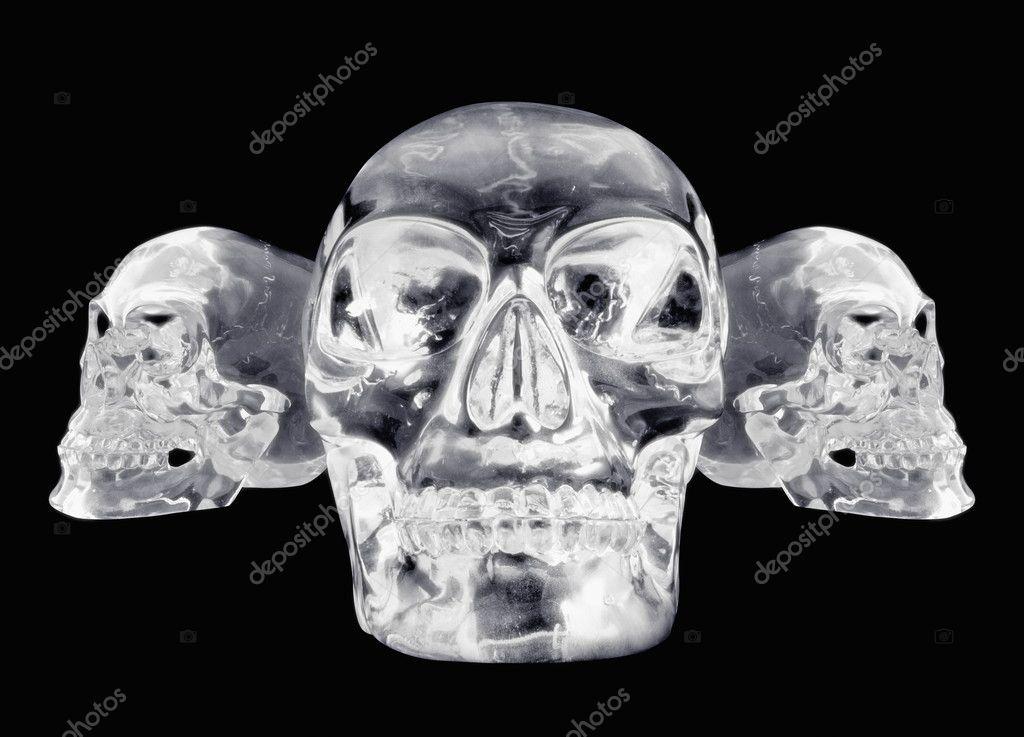 все хрустальные черепа фото