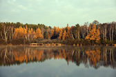 Fall in Tomahawk, Wisconsin — Stock Photo
