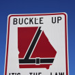Buckle up Georgia — Stock Photo