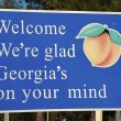 Welcome to Georgia — Stock Photo