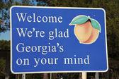 Welcome to Georgia — Stock Photo