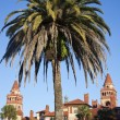 Palm in front of Flagler College — Stock Photo