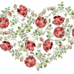 cuore decorativo. biglietto di auguri San Valentino disegnati a mano. illustrazione ros — Vettoriale Stock