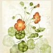 Greeting card with nasturtium. Illustration nasturtium. — Stock Vector