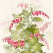 "Illustration  ""bleeding heart"" (Dicentra spectabilis). Greeting card with flower. — Stock vektor"
