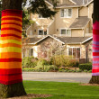 Dressed up cedars new apartments in Redmond — Stock Photo