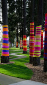 Colorful tree socks in Redmond — Stock Photo
