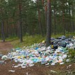 Rubbish in forest. — Stock Photo #9617991