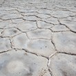 Stock Photo: Salt flats