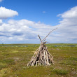 Yurt in tundra — Stock Photo