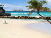 Beach with Palm Tree — Stock Photo