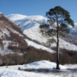 Stock Photo: Glen Nevis.