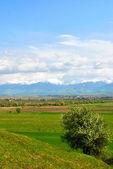 Spring mountain landscape — Stock Photo