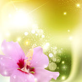 Vector abstract background with a delicate flower and radiance — 图库矢量图片