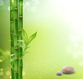 Vector meditative, oriental background with bamboo and stones — Vettoriale Stock