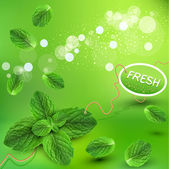 Vector green background with fresh mint leaves — Stock Vector